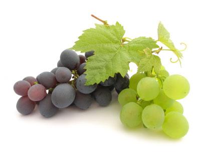 catran-blog-fruta-uva-outono