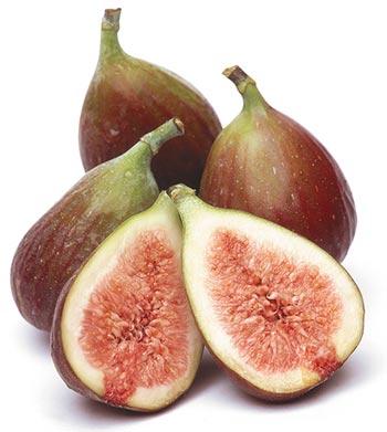 figo-fruta-catran-blog-outono