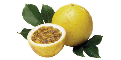 maracujá-catran-blog-fruta-outono