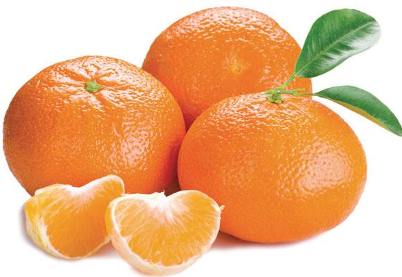 tangerina-catran-blog-fruta-outono